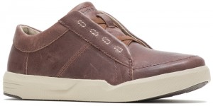 H-Layden Genius Brown